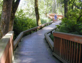 This wooden walkway is over a wetlands in a wooded greenspace.